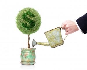 какие банки выдают кредиты без справки о доходах